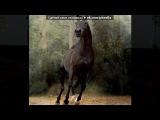 «Основной альбом» под музыку Песня из мультика про лошадей